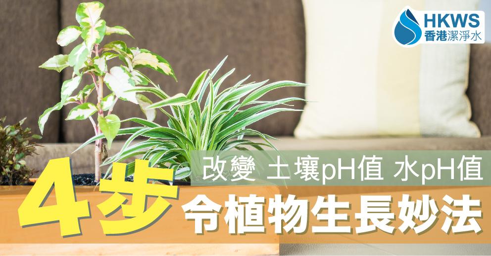 令植物生長更好4步曲!